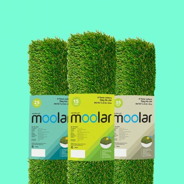 หญ้าเทียม moolar